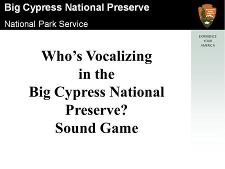 Who's Vocalizing in the Big Cypress National Preserve? Sound Game.