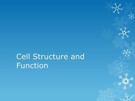 Cell Structure and Function. Cell Membrane  Regulates what enters and leaves the cell.