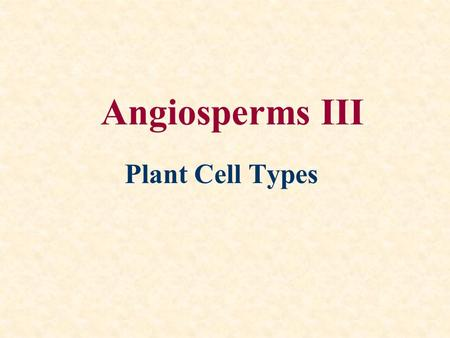 Angiosperms III Plant Cell Types.