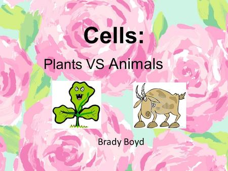 Cells: Brady Boyd Plants VS Animals. ✽ Content Area : Science ✽ Grade Level : 5 th Grade ✽ Summary : The purpose of this power point is for the student.