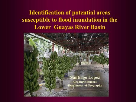 Identification of potential areas susceptible to flood inundation in the Lower Guayas River Basin Santiago Lopez Graduate Student Department of Geography.