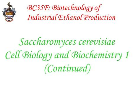 BC35F: Biotechnology of Industrial Ethanol Production Saccharomyces cerevisiae Cell Biology and Biochemistry 1 (Continued)