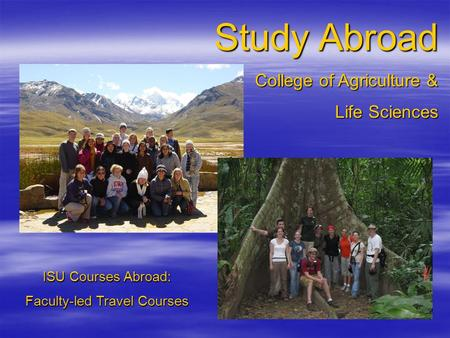 Study Abroad College of Agriculture & Life Sciences ISU Courses Abroad: Faculty-led Travel Courses.