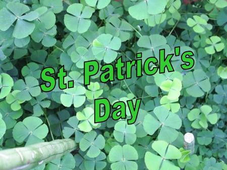 Saint Patrick's Day has come to be associated with everything Irish: anything green and gold, shamrocks and luck. Most importantly, to those who celebrate.