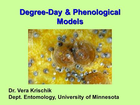 Dr. Vera Krischik Dept. Entomology, University of Minnesota Degree-Day & Phenological Models.