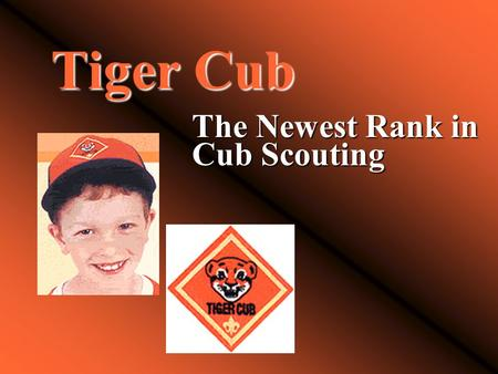 Tiger Cub The Newest Rank in Cub Scouting. Tiger Cubs History of Tiger Cubs Highlights:  1982  Introduction of Tiger Cubs, BSA  1986-1993  Fast Start.