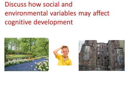 Discuss how social and environmental variables may affect cognitive development.