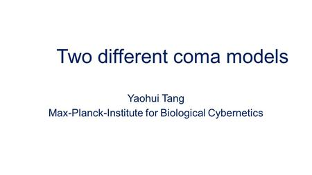 Two different coma models Yaohui Tang Max-Planck-Institute for Biological Cybernetics.