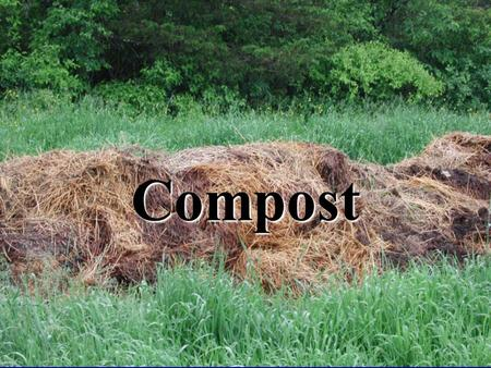 Compost. In nature, one's waste is another's food! is another's food!
