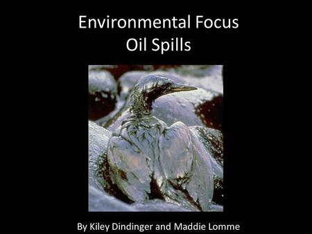 Environmental Focus Oil Spills By Kiley Dindinger and Maddie Lomme.