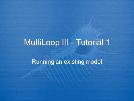 MultiLoop III - Tutorial 1 Running an existing model.