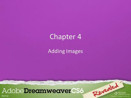 Chapter 4 Adding Images. Inserting and Aligning Images Graphics refer to the appearance of most non- text items on a web page, such as: – Photographs.