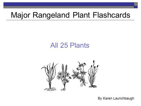All 25 Plants Major Rangeland Plant Flashcards By Karen Launchbaugh.
