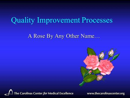 Quality Improvement Processes A Rose By Any Other Name…