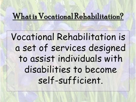 What is Vocational Rehabilitation? Vocational Rehabilitation is a set of services designed to assist individuals with disabilities to become self-sufficient.