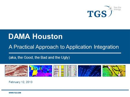 DAMA Houston (aka, the Good, the Bad and the Ugly) A Practical Approach to Application Integration February 12, 2013.