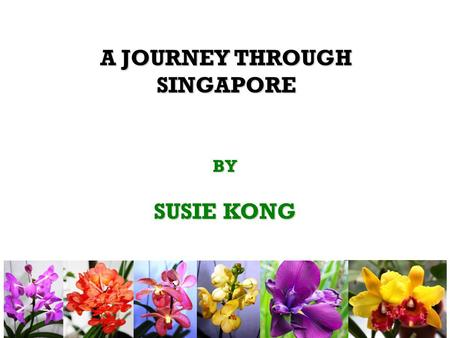 BY SUSIE KONG A JOURNEY THROUGH SINGAPORE. A PROPHET IS NEVER RECOGNISED IN HIS OWN COUNTRY.