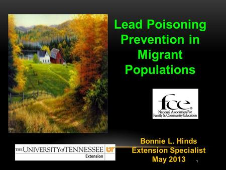 Lead Poisoning Prevention in Migrant Populations Bonnie L. Hinds Extension Specialist May 2013 1.