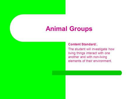 Animal Groups Content Standard:. The student will investigate how living things interact with one another and with non-living elements of their environment.