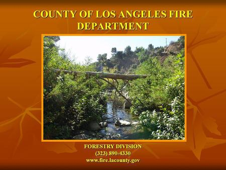 COUNTY OF LOS ANGELES FIRE DEPARTMENT FORESTRY DIVISION (323) 890-4330 www.fire.lacounty.gov.