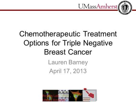 Chemotherapeutic Treatment Options for Triple Negative Breast Cancer Lauren Barney April 17, 2013.