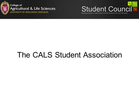 The CALS Student Association. Executive Council 12 officers, 8 are elected Reasonable officer criteria for each position are defined Officer duties are.