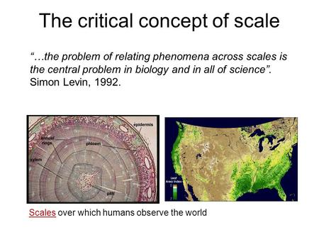 "The critical concept of scale ""…the problem of relating phenomena across scales is the central problem in biology and in all of science"". Simon Levin,"