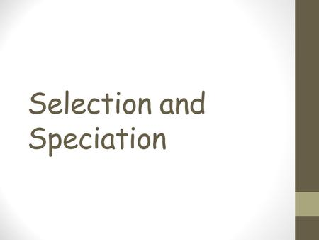 Selection and Speciation. Write a sentence to describe what the phrase 'survival of the fittest' means to you.