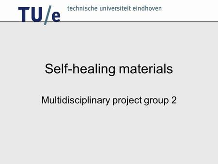 Self-healing materials Multidisciplinary project group 2.