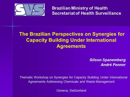Brazilian Ministry of Health Secretariat of Health Surveillance Thematic Workshop on Synergies for Capacity Building Under International Agreements Addressing.