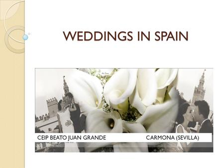 WEDDINGS IN SPAIN CEIP BEATO JUAN GRANDE CARMONA (SEVILLA)