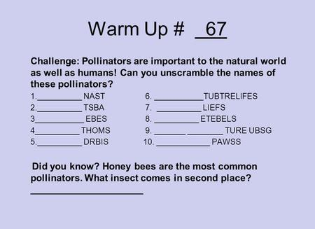Warm Up # 67 Challenge: Pollinators are important to the natural world as well as humans! Can you unscramble the names of these pollinators? 1.__________.