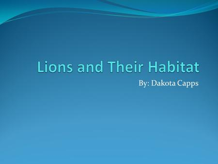 By: Dakota Capps Animal The animal I chose is the Lion. The Lion fall into the Mammal classification.