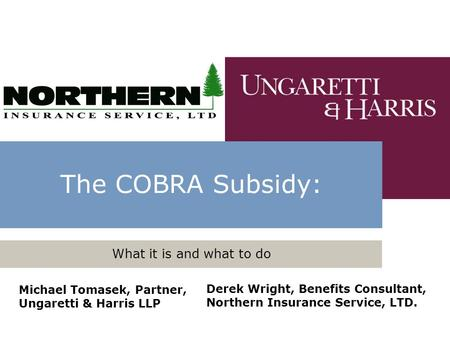 The COBRA Subsidy: What it is and what to do Michael Tomasek, Partner, Ungaretti & Harris LLP Derek Wright, Benefits Consultant, Northern Insurance Service,