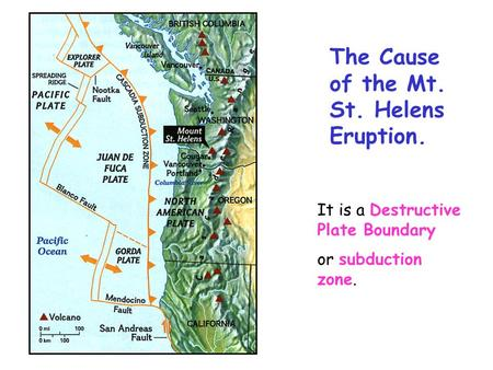 The Cause of the Mt. St. Helens Eruption.