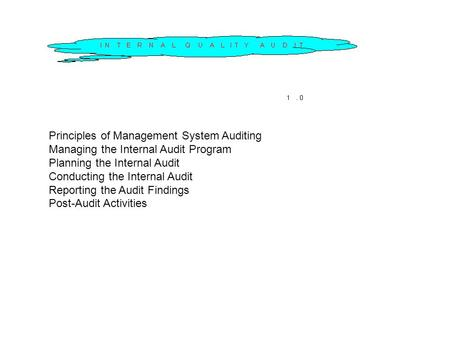 Principles of Management System Auditing Managing the Internal Audit Program Planning the Internal Audit Conducting the Internal Audit Reporting the Audit.