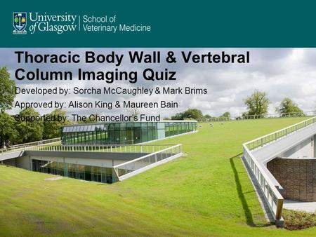Thoracic Body Wall & Vertebral Column Imaging Quiz