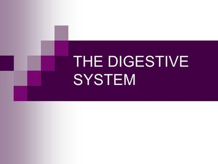 THE DIGESTIVE SYSTEM. Q #1 Digestion begins in the oral cavity. Process called digestion occurs as food is broken down both chemically and mechanically.
