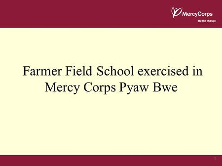 1 Farmer Field School exercised in Mercy Corps Pyaw Bwe.