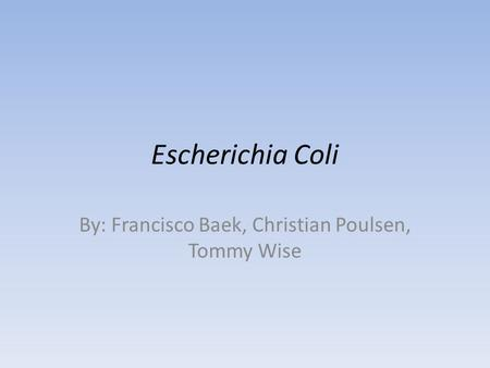 Escherichia Coli By: Francisco Baek, Christian Poulsen, Tommy Wise.
