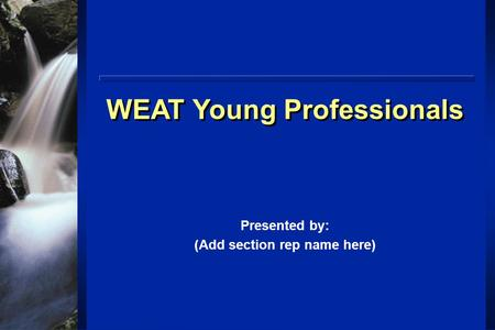 WEAT Young Professionals Presented by: (Add section rep name here)