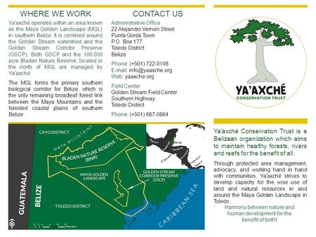 Ya'axché Conservation Trust is a Belizean organization which aims to maintain healthy forests, rivers and reefs for the benefit of all. Through protected.
