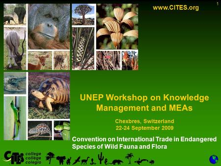 1 Convention on International Trade in Endangered Species of Wild Fauna and Flora www.CITES.org UNEP Workshop on Knowledge Management and MEAs Chexbres,