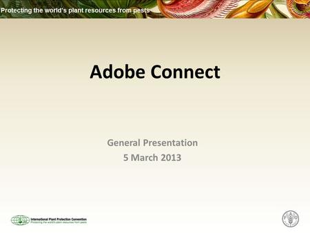 Adobe Connect General Presentation 5 March 2013. What is Adobe Connect? Adobe Connect is an online tool that is used to set up calls for discussion or.