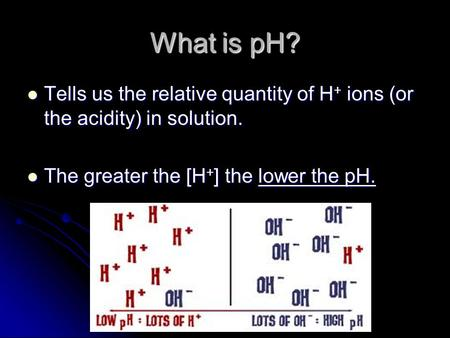 What is pH? Tells us the relative quantity of H + ions (or the acidity) in solution. Tells us the relative quantity of H + ions (or the acidity) in solution.