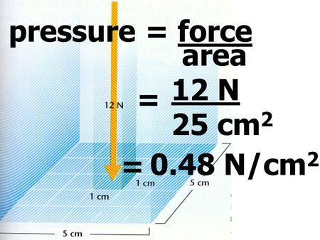 Pressure = force area = 12 N 25 cm 2 = 0.48 N/cm 2.