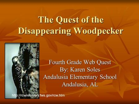 The Quest of the Disappearing Woodpecker Fourth Grade Web Quest By: Karen Soles Andalusia Elementary School Andalusia, AL