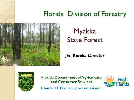 Florida Division of Forestry Myakka State Forest Jim Karels, Director Florida Department of Agriculture and Consumer Services Charles H. Bronson, Commissioner.