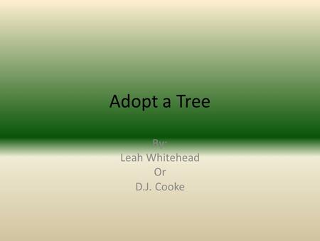 Adopt a Tree By: Leah Whitehead Or D.J. Cooke The fruit of White Oak is an acorn, growing over an inch long, with a warty cap. Many animals eat these.