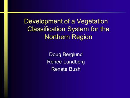 Development of a Vegetation Classification System for the Northern Region Doug Berglund Renee Lundberg Renate Bush.